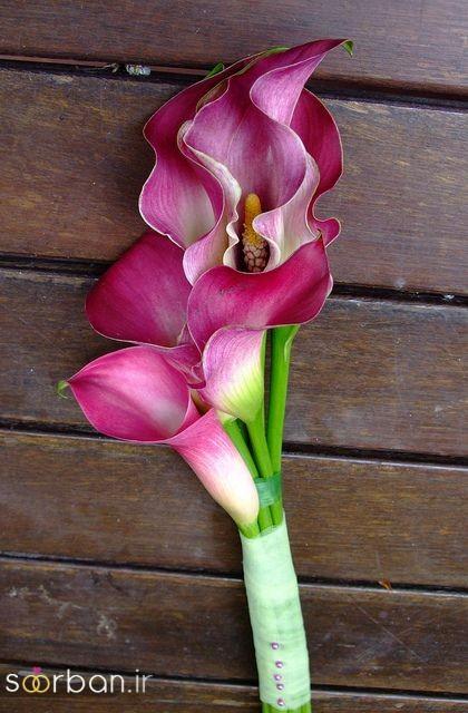 دسته گل عروس شیپوری 12