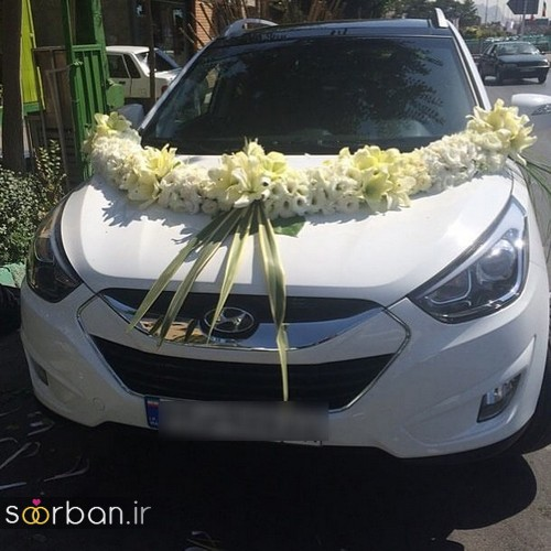 عکس ماشین عروس جدید و شیک-13