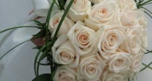 انواع دسته گل عروس قم