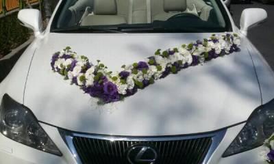 کرایه انواع ماشین کروک و کلاسیک تهران