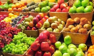 مشاوره و تهیه میوه و تره بار مجالس