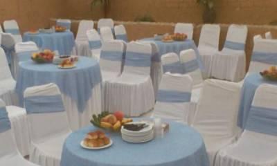 باغ مجالس انار شیراز