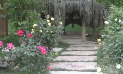 تشریفات رستاک شیراز