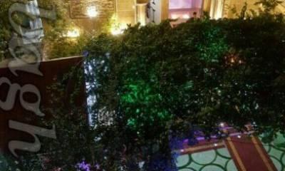 باغ تالار ارس تهران