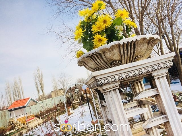 باغ عروس آزالیا در بوکان4
