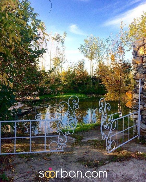 باغ عكاسى GT در شيرود مازندران0