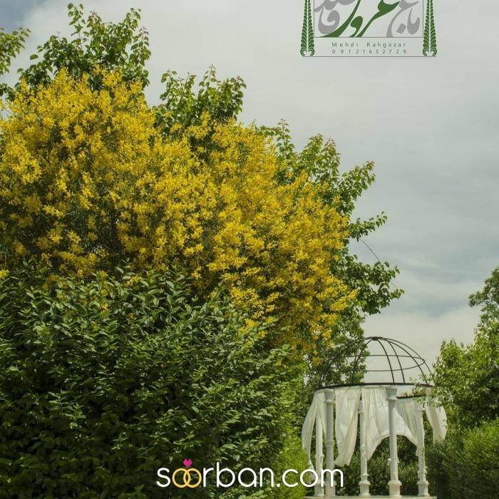 باغ آتلیه قاصدک تهران2