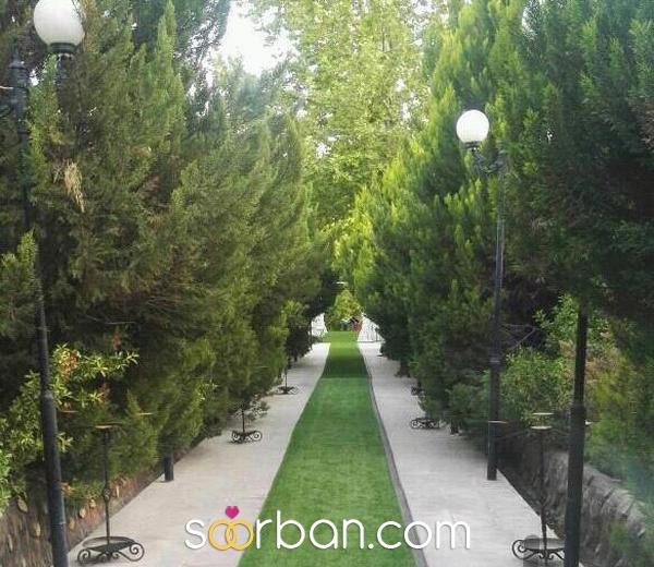 تشریفات رویای طلایی شیراز1