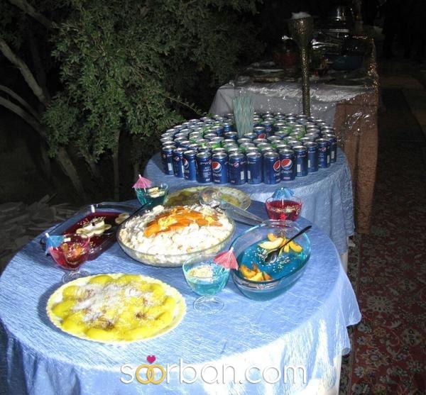 باغ مجالس انار شیراز1