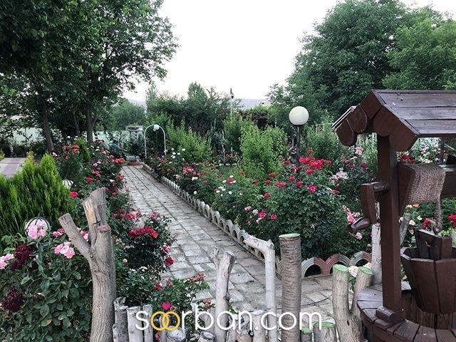 باغ عروس آزالیا در بوکان0