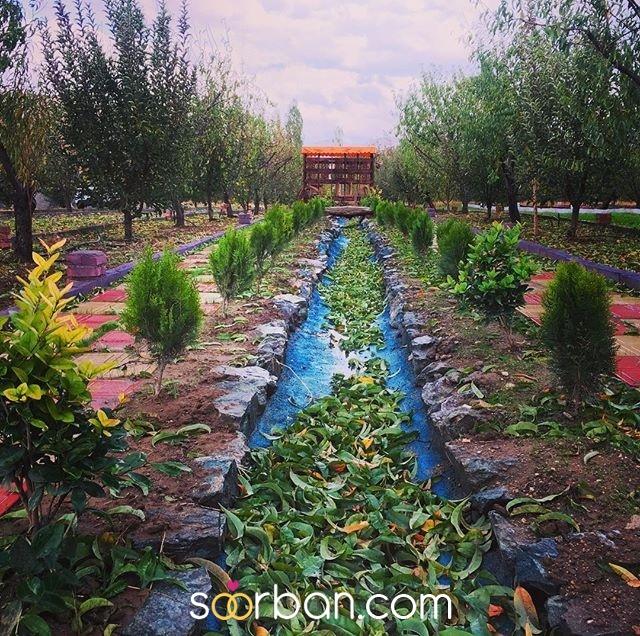 باغ عروس آزالیا در بوکان3