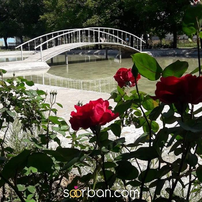 باغ عمارت ویدار (رسپینا) کرج3