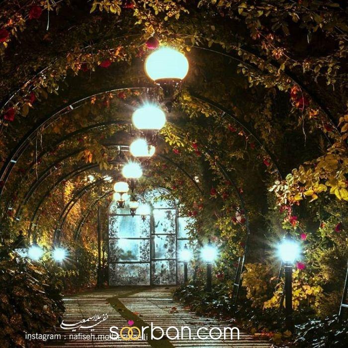 باغ عروس قاصدک شهریار6