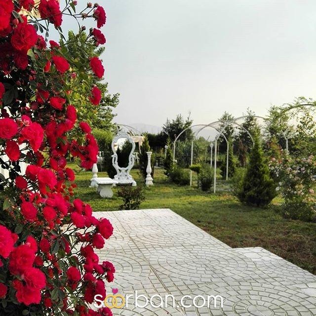 باغ عروس دنیرا گیلان2