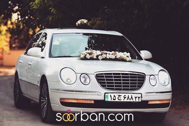 باغ عروس آزالیا در بوکان1
