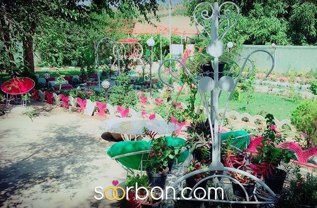باغ عروس آزالیا در بوکان6