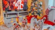 ایده برای تزیینات کریسمس 2022 | مدل تزیین درخت کریسمس