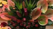50 سبد گل خواستگاری شیک و جدید 2020