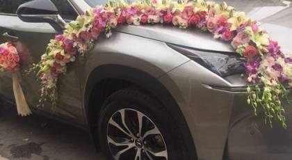 30 عکس ماشین عروس شیک و جدید